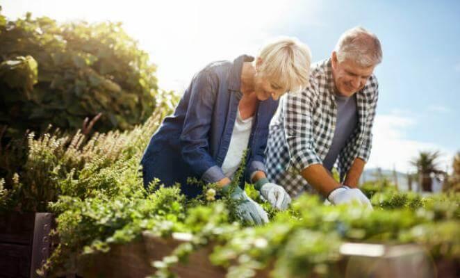 homem, mulher, jardim com ervas