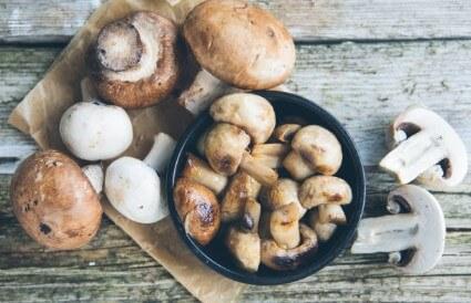 Cogumelos de Campo