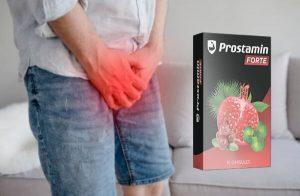 Prostamin Forte – Suplemento dietético de apoio à próstata com extrato de Gotu Kola para controle da bexiga, próstata completa e saúde sexual